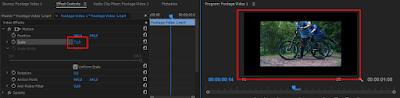 Scale Adobe Premiere pro