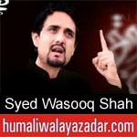 https://humaliwalaazadar.blogspot.com/2019/09/syed-wasooq-shah-nohay-2020.html