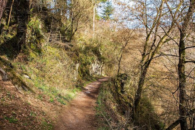 Traumpfad Eltzer-Burgpanorama  Premiumwanderweg  Traumpfade Rhein-Mosel-Eifel-Land  Wanderung Burg-Eltz 12