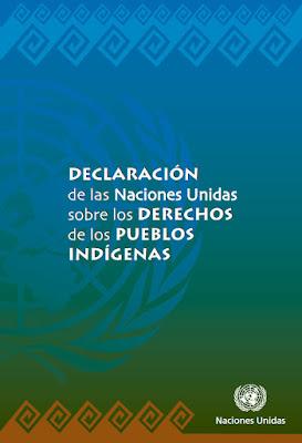 http://www.un.org/esa/socdev/unpfii/documents/DRIPS_es.pdf