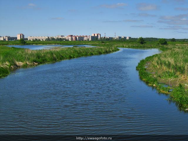 Река Ижора