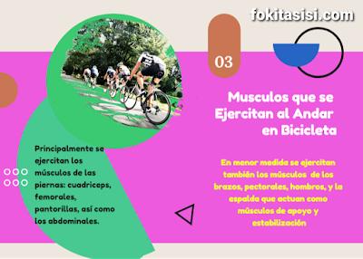 (Imagen) los musculos del tren superior cumplen un rol importante al andar en bicicleta ya que sirven de apoyo y estabilización