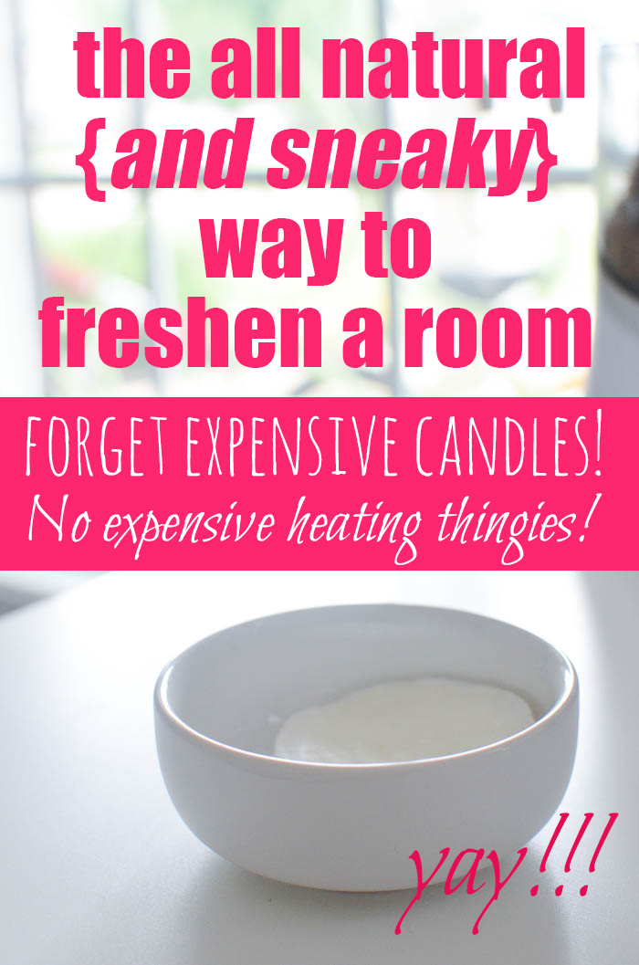 Housewife Eclectic 18 Spring Cleaning Hacks