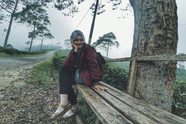 Foto gadis cantik di kebun teh