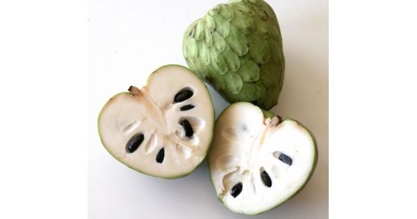 Annona Cherimola Nasıl Bir Meyve?