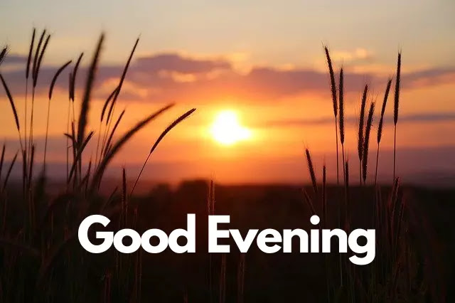 Good Evening Status