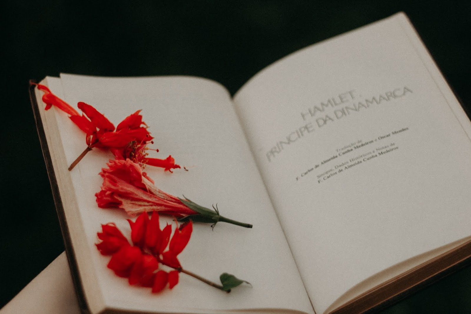 Livros tem o poder de te enviar para uma realidade completamente diferente da sua, te faz viver aventuras e conhecer lugares que tu nunca imaginou que iria ser possível ou interessante. Por conta disso ele acaba te inspirando de uma forma ou outra. Sempre amei escutar histórias ou assistir filmes, mas achava que os detalhes eram insuficientes e os livros conseguiam satisfazer essa minha curiosidade.    O engraçado que quando pequena, sempre imagine que ler varias paginas seria bem chato para uma pessoa inquieta como eu. Mas, graças a ser uma criança espoleta que vivia fazendo arte, minha mãe me colocava de castigo no quarto ser direito a sair e assistir filmes. Foi então que tive a brilhante ideia de me cadastrar na biblioteca da escola, comecei com poesias já que eram pequenas, mas pra uma criança de 10 anos não era divertido o suficiente, então me aventurei em clássicos da literatura como Morro dos ventos Uivantes (meu primeiro crush literário foi o Heathcliff). Com o tempo eu comecei a devorar vários livros por semana, ler outros gêneros e ter um livro ao alcance da mão em todos os momentos do dia. Chegou em uma época (livros digitais) que eu chegava a ler 1 livro por dia. Hoje continuo lendo bastante, inclusive se vocês tiverem algum livro para indicar e que a leitura seja envolvente é só deixar nos comentários <3 Mad Souls Blog