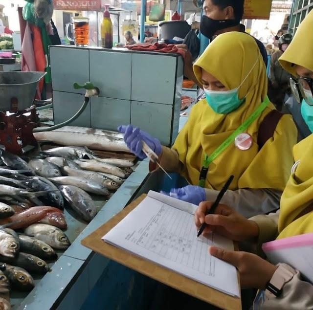 Ekspor Perikanan Yogyakarta Meningkat, Tuna Kaleng Tetap Jadi Andalan