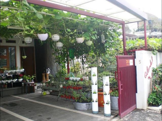 https://tipspetani.blogspot.com/2019/05/jenis-sayuran-yang-dapat-di-tanam-di.html