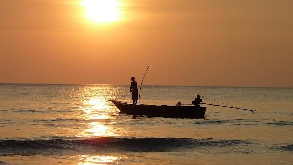 Sektor Akuakultur Dan Perikanan Indonesia