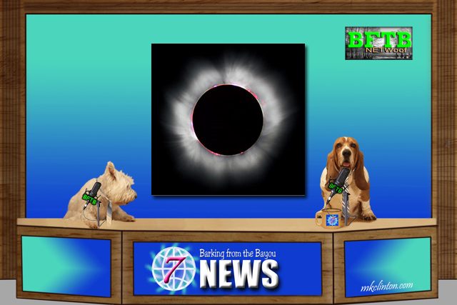 BFTB NETWoof News on the solar eclipse