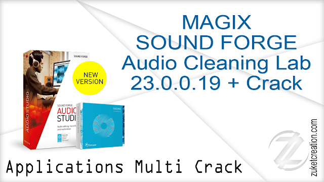 MAGIX SOUND FORGE Audio Cleaning Lab 23.0.0.19 + Crack