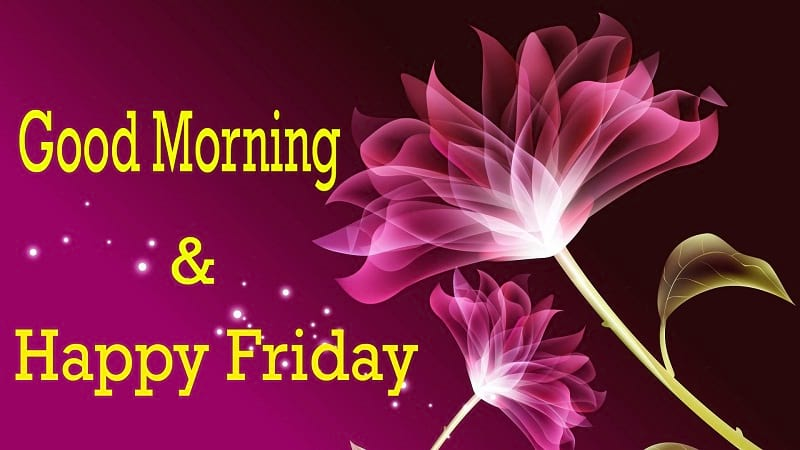 Happy Friday Good Morning Flower Blessings and Wishes