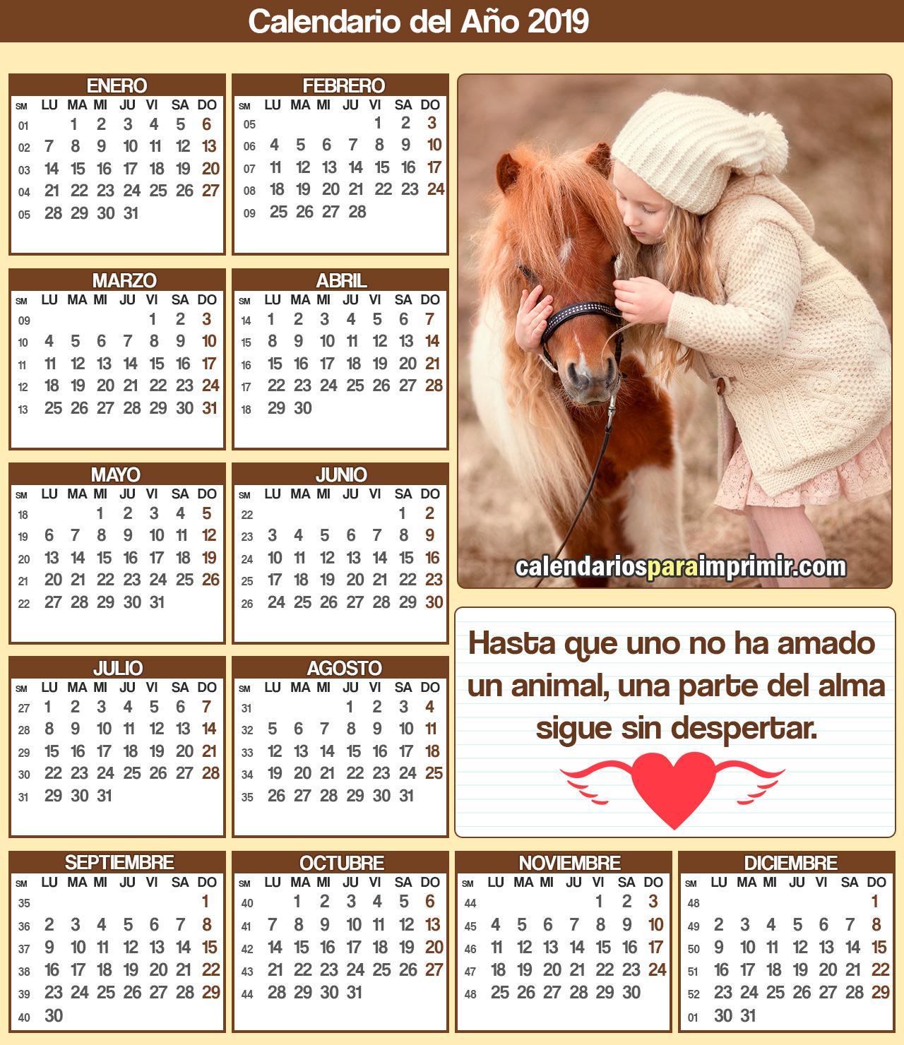 calendario 2019 animales para imprimir