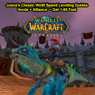 🐱‍🐉 Joanas World of Warcraft Leveling Strategy Guides Review - Classic WoW