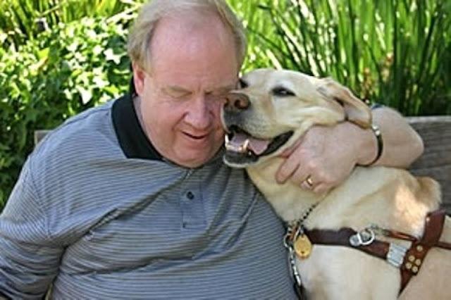 Собака-поводырь, которая вернулась, чтобы спасти своего хозяина во время теракта 9/11