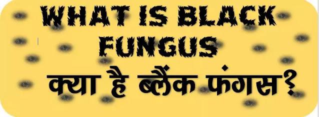 What is Black Fungus? what is mucormycosis, ब्लैक फंगस से कैसे बचें? म्यूकरमाइकोसिस क्या है, इसकी दस बातें