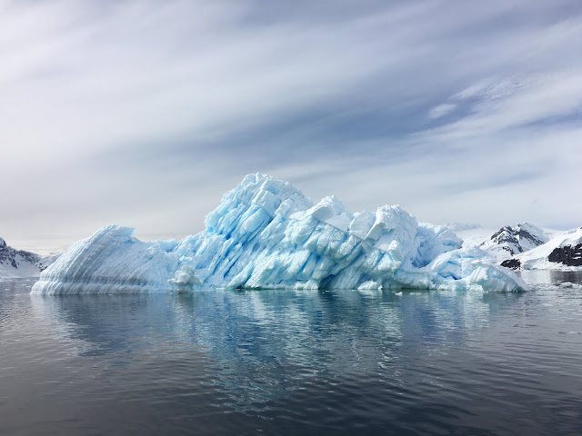 """Stark warning"": Combating ecosystem collapse from the tropics to the Antarctic"