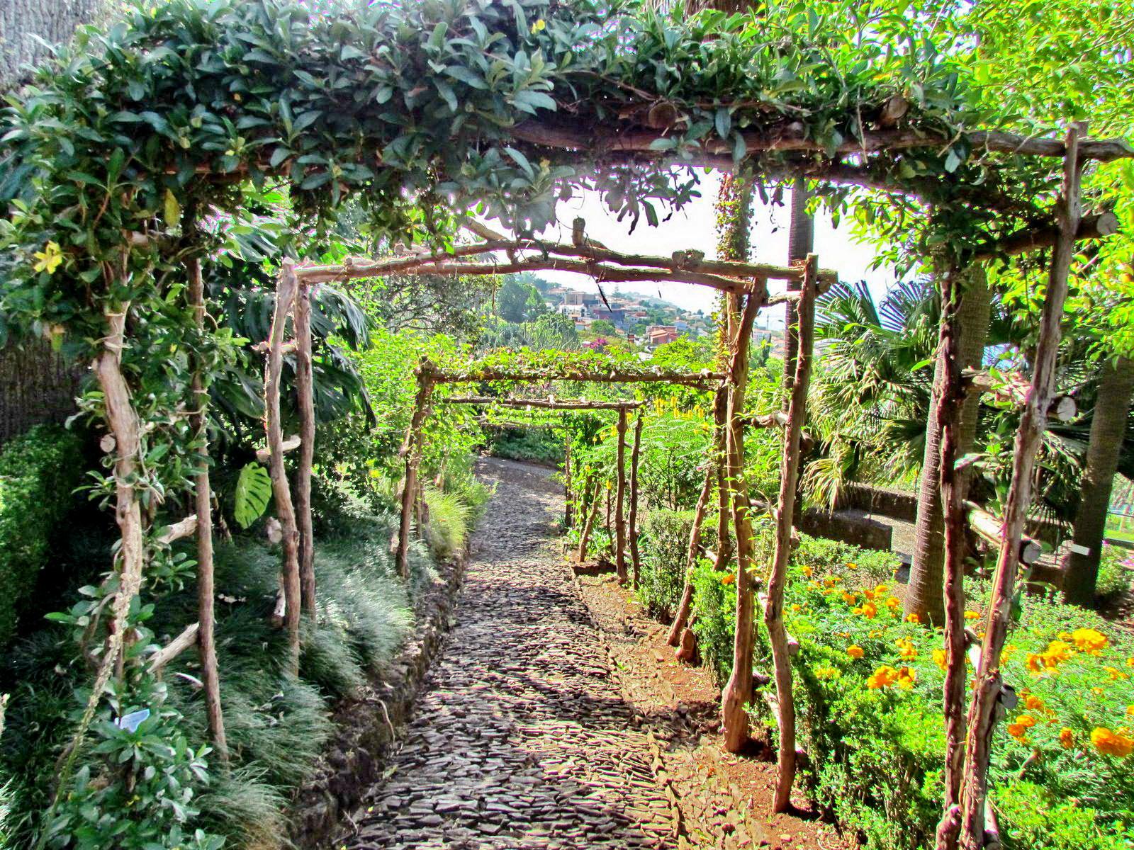 a view in Botanic Garden