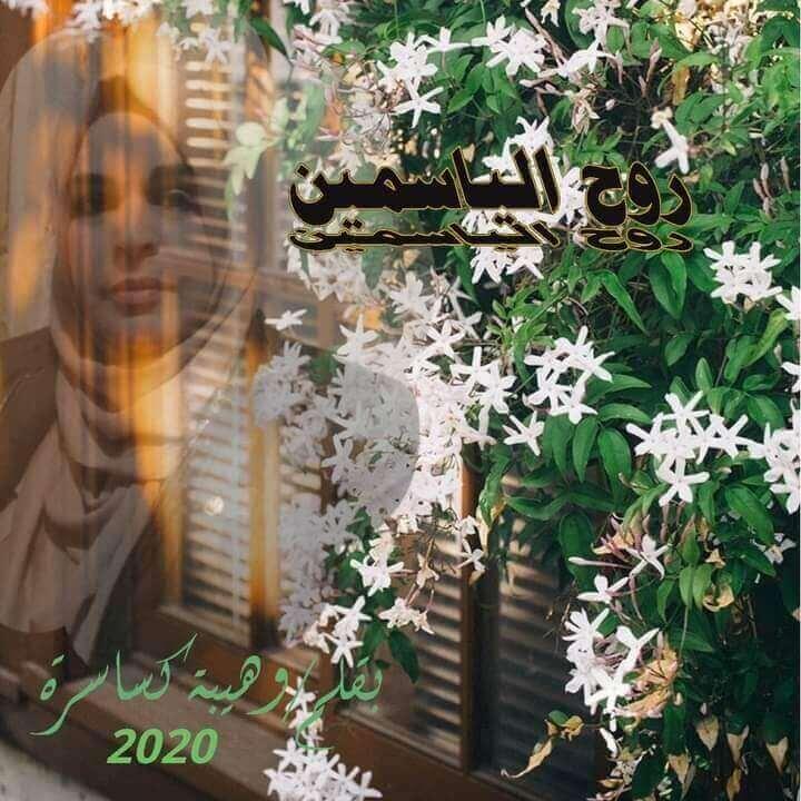 روح الياسمين بقلم الشاعرة الجزائرية: وهيبة كساسرة