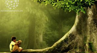 La humanidad con la naturaleza