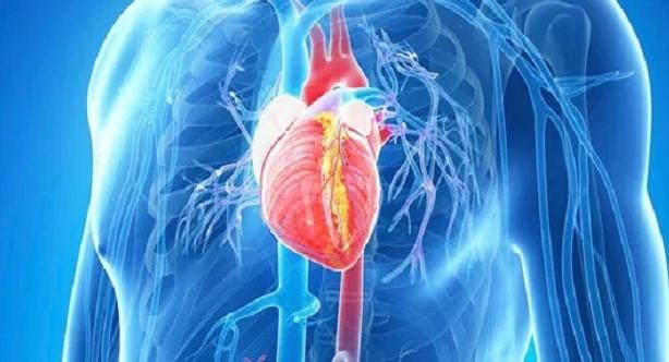 Mengenal Aritmia, Penyakit yang Mengganggu Detak Jantung