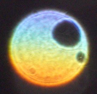 gradient color orb