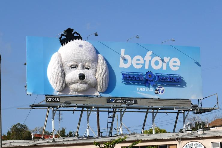 Pooch Perfect 3D billboard installation
