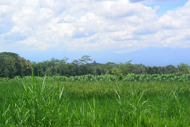 Candi Borobudur tampak dari kejauhan