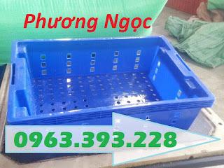 Sóng nhựa HS002, sọt nhựa đựng cá, sóng cá, sọt nhựa rỗng đựng hải sản,  Product-10339-69756