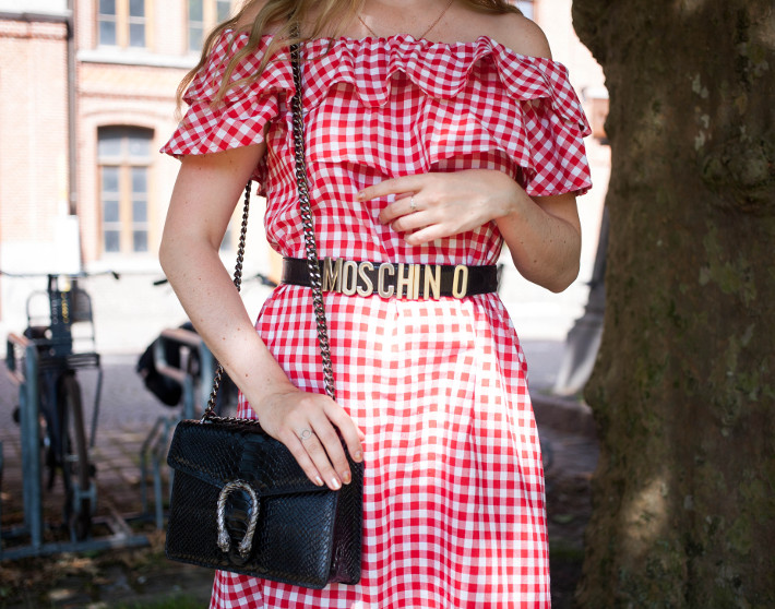 Moschino belt, Gucci Dyonisus dupe bag