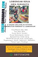 Karir Surabaya Terbaru di Pinokio Ice Juni 2020