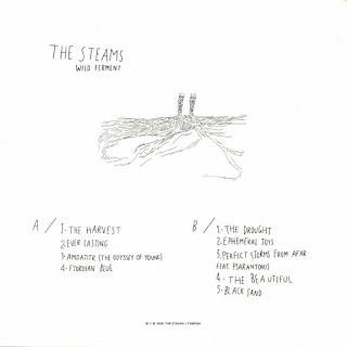 The Steams - Wild Ferment_lp back