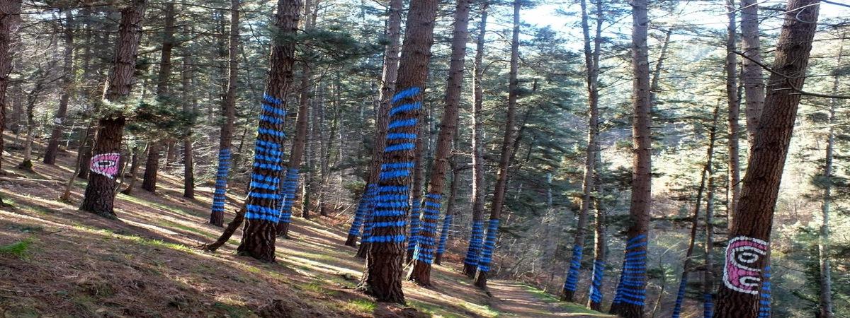 ¿Te gustan los Bosques Mágicos? Estuvimos en el Bosque Pintado de Oma