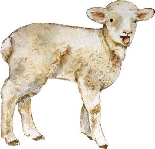 Dibujos animales granja para imprimir imagenes y dibujos - Dibujos en colores para imprimir ...
