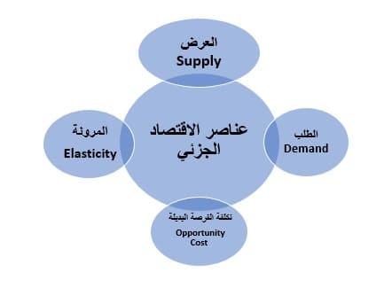 مفهوم وعناصر الاقتصاد الجزئي