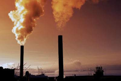 effects of air pollution on environment in points, effects of air pollution in points, how does air pollution affect the environment, air pollution causes and effects, effects of air pollution on plants, what is air pollution, effects of air pollution on human health, air pollution solutions, air pollution articles for students