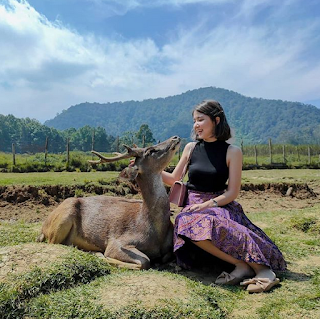 Wisata Ranca Upas Bandung Selatan