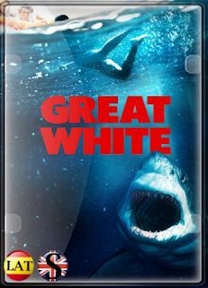 Tiburón Blanco (2021) HD 720P LATINO/INGLES
