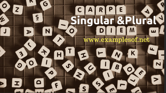 100 Examples of Singular and Plural