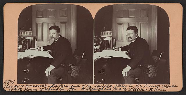 Review: Two Biographical Novels about Theodore Roosevelt for Middle Schoolers