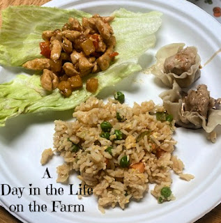 Lettuce Wraps with sides
