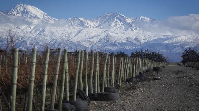 Mendoza fue seleccionada entre los 100 mejores lugares del mundo