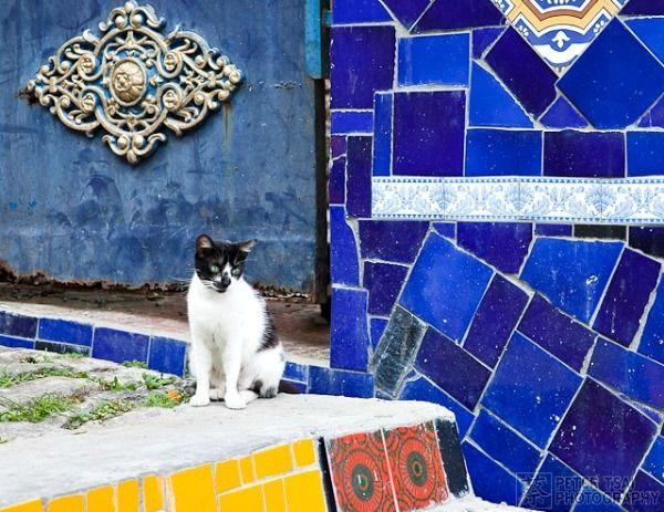 selaron steps rio de janeiro brazil