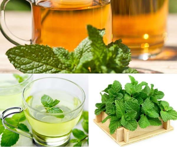 5 Loại trà giúp giảm cân nhanh và an toàn nhất