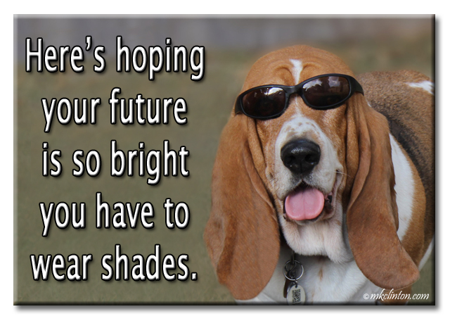 Basset with sunglasses meme