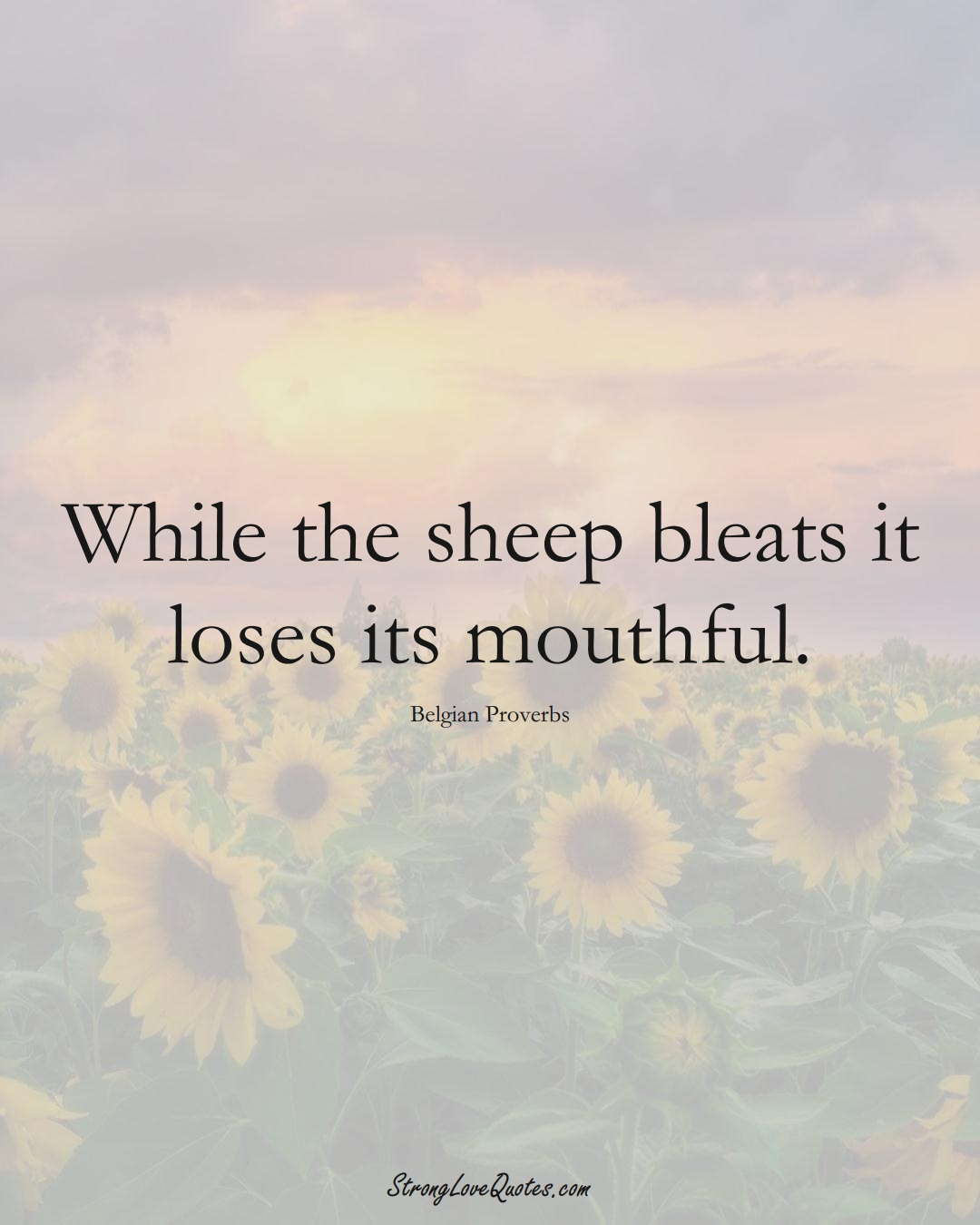 While the sheep bleats it loses its mouthful. (Belgian Sayings);  #EuropeanSayings