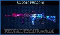 SC-2010 PBIC2019