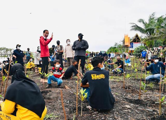 Jokowi Sebut Rehabilitasi Mangrove akan Dilakukan di Seluruh Tanah Air.lelemuku.com.jpg