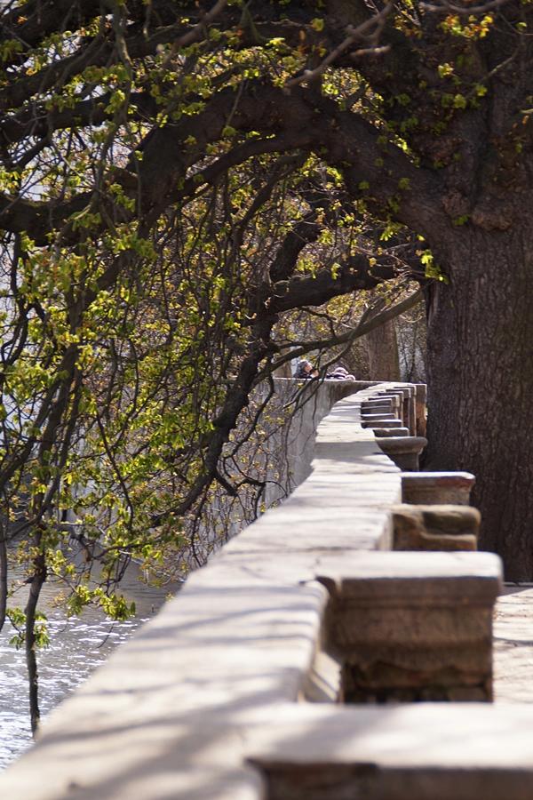 Spring in Prague | Tasteboykott